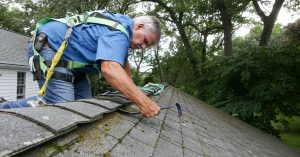 How to Clean and Prevent a Mossy Roof