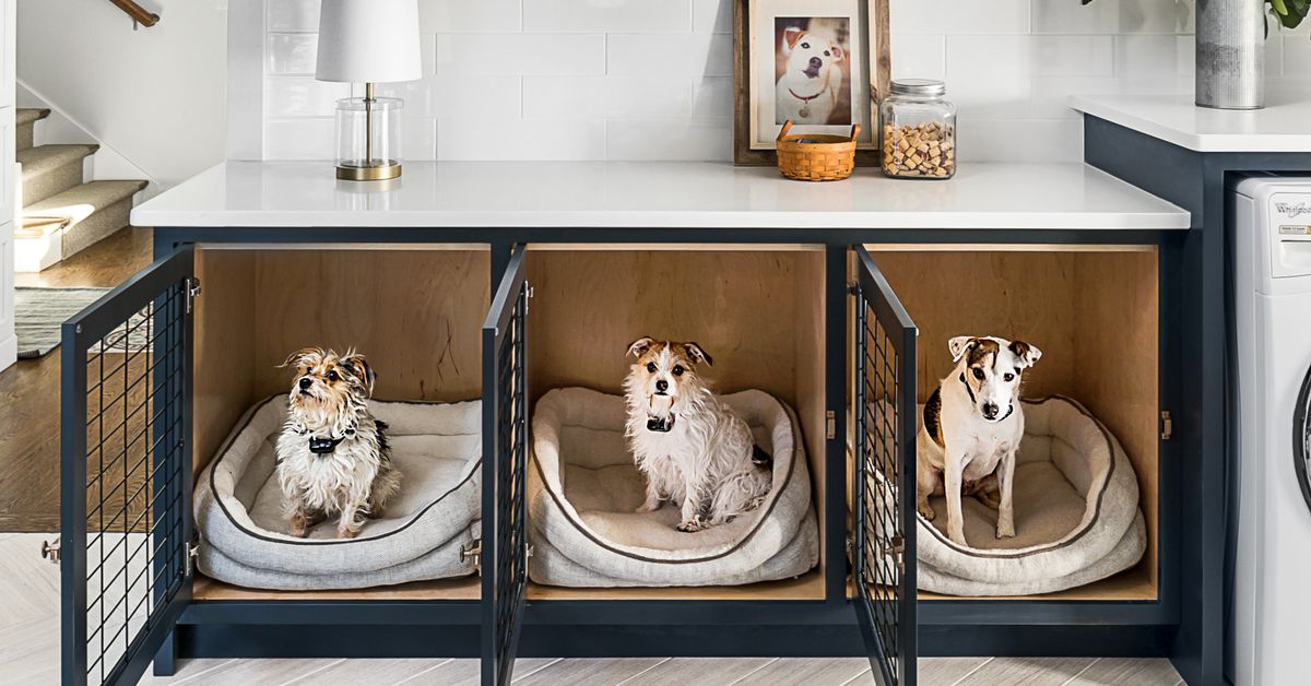 Creative Ideas for Pet Crates and Gates in Your Home