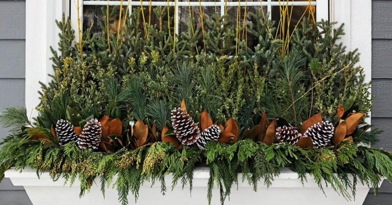 How to Keep Window Box Arrangements Fresh in the Winter